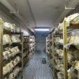 Interior, where all the fungal fun happens