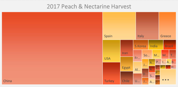 Graph of the peach and nextarine harvest