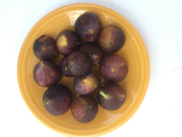ripe-brown-turkey-figs